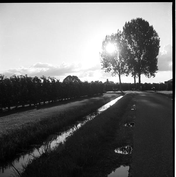 lindavandenberg-vruchtbaregrond5