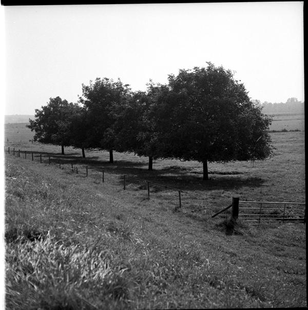 lindavandenberg-vruchtbaregrond1