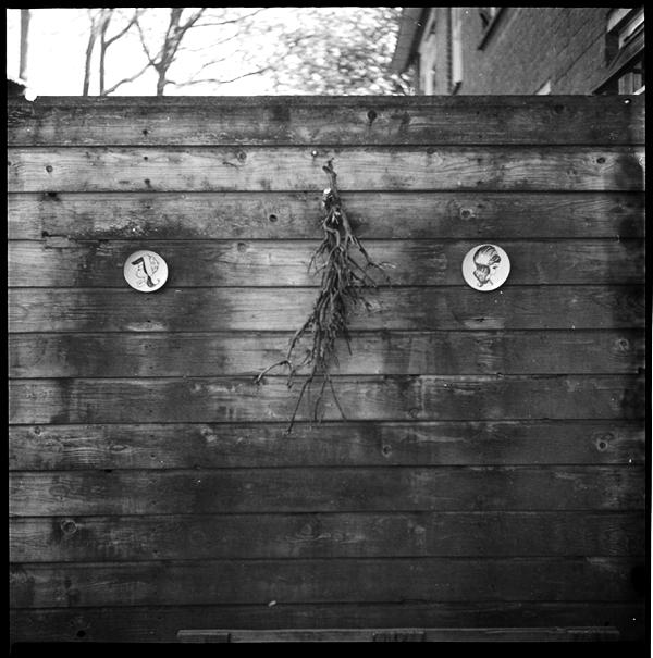 lindavandenberg-vruchtbaregrond11