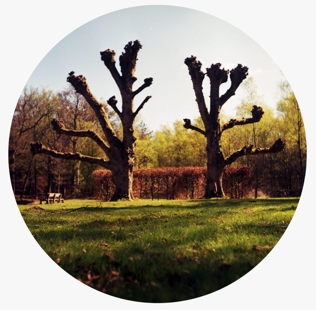 lindavandenberg-round1